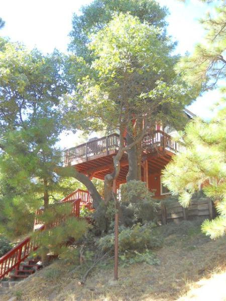 Beautiful Red Cabin in Running Springs - Image 1 - Running Springs - rentals
