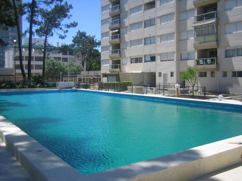 heated swimming pool, available from november to april - Punta del Este, beautiful apartment for rental, daily, weekly or month - Punta del Este - rentals