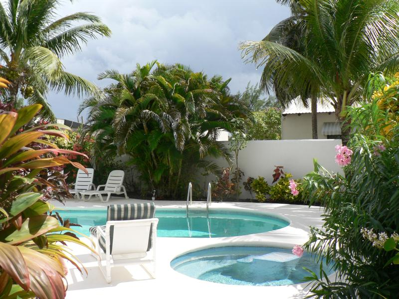 pool area - luxury villa near The Crane - Saint Philip - rentals