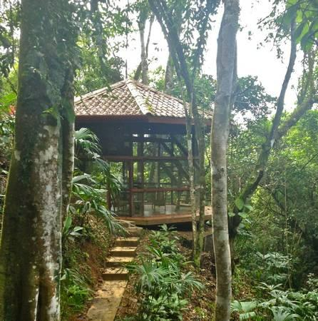 Jungle Villa with Private Waterfall & Pool - Image 1 - Dominical - rentals