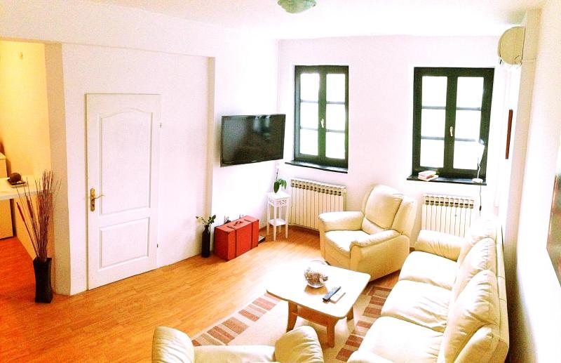DolceVita - comfortable&cheap! - Image 1 - Zagreb - rentals