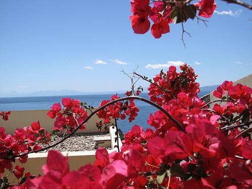 Voula Athens by the Sea - Voula/Glyfada. Studio next to sea & Athens - Greece - rentals