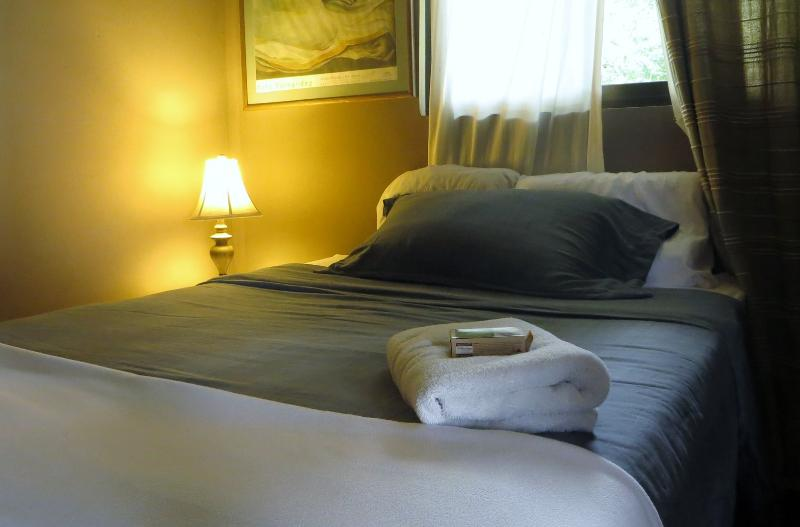 double bedroom 1 upstairs - B&B private rooms in Beautiful quiet area with Cloud forest backyard! - San Jose - rentals
