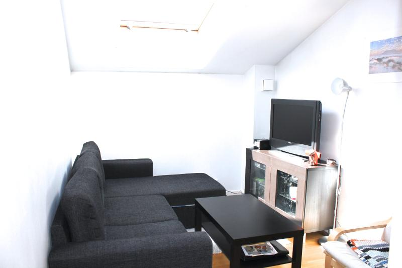 Most central studio in Oslo Centre - Image 1 - Oslo - rentals