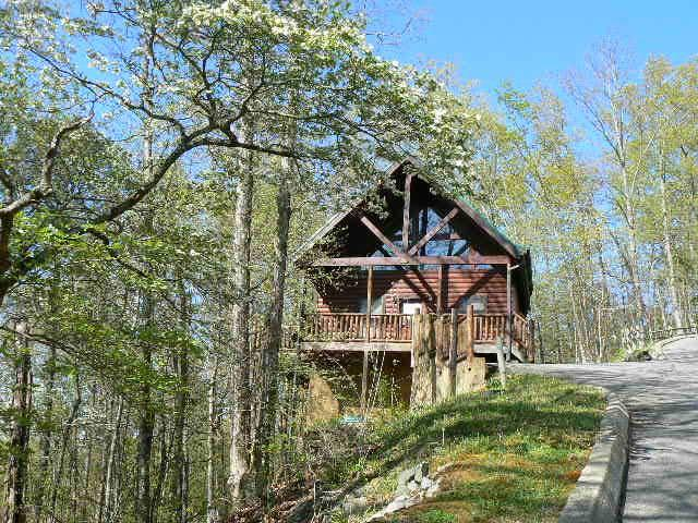Sky High View - Image 1 - Sevierville - rentals