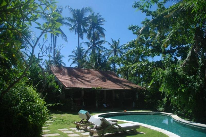 House and Garden - Tropical Bali villa on rice field in Canggu - Canggu - rentals
