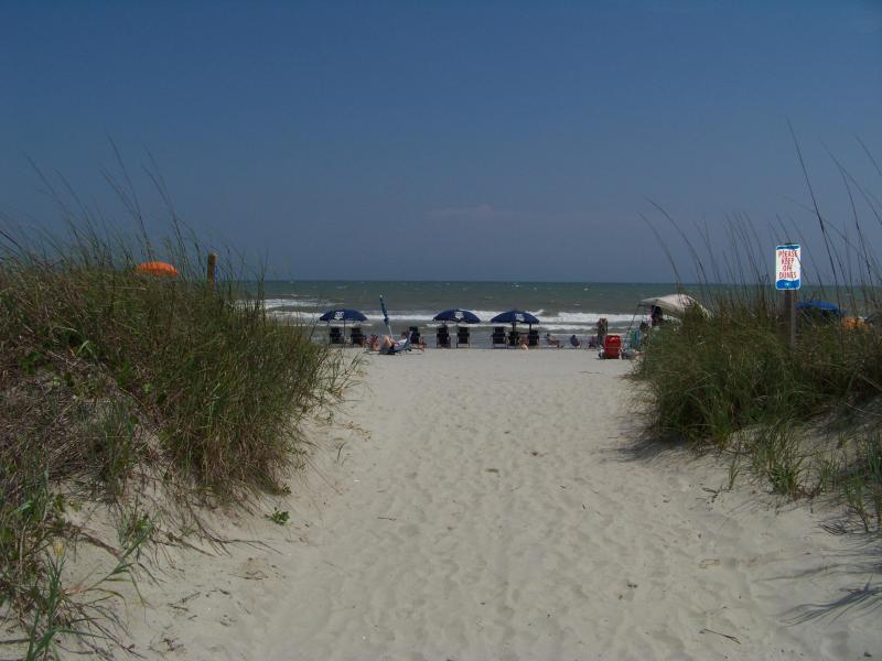 Just steps away from the beach - North Myrtle Beach Townhouse on Ocean - North Myrtle Beach - rentals
