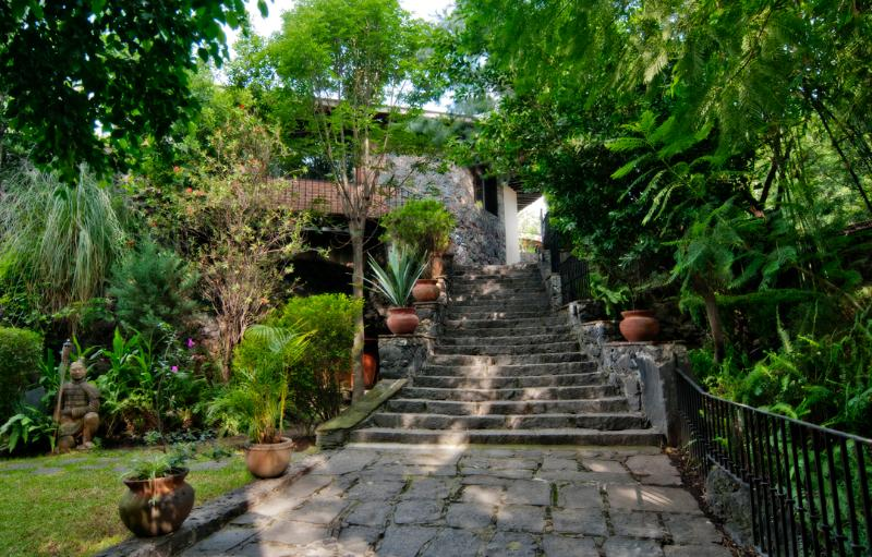 Entrance - Casa Piedra Coyoacan Signature B&B - Mexico City - rentals