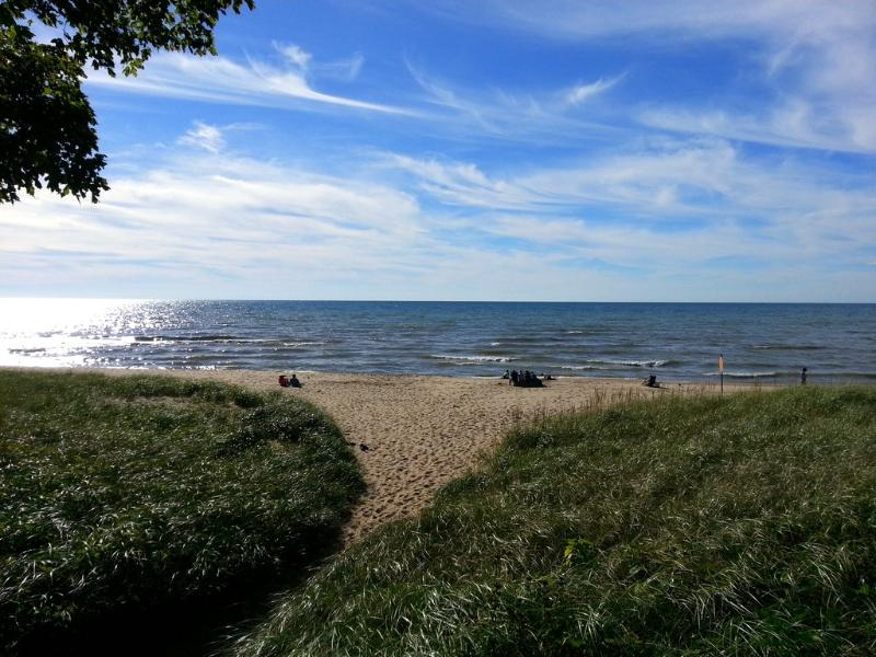 Luxury cottage steps from Lake MI: serene, private - Image 1 - Douglas - rentals