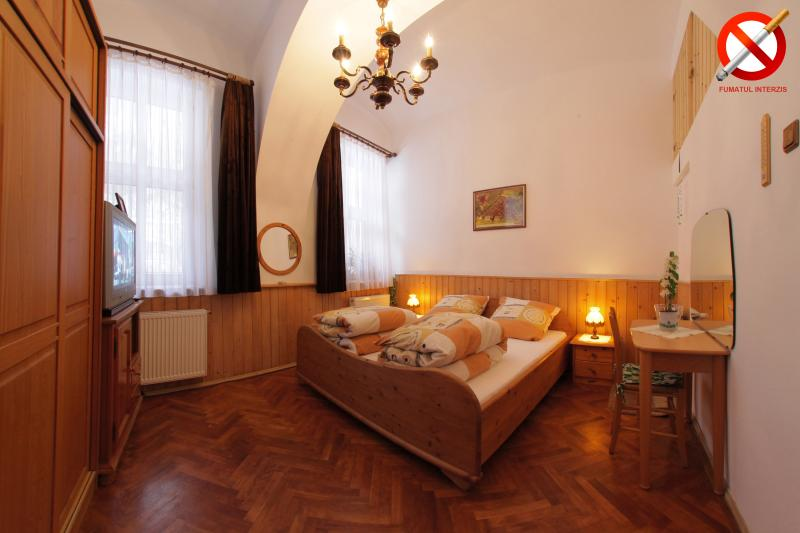 Rustik Studio Old Historic Center Brasov - Image 1 - Brasov - rentals