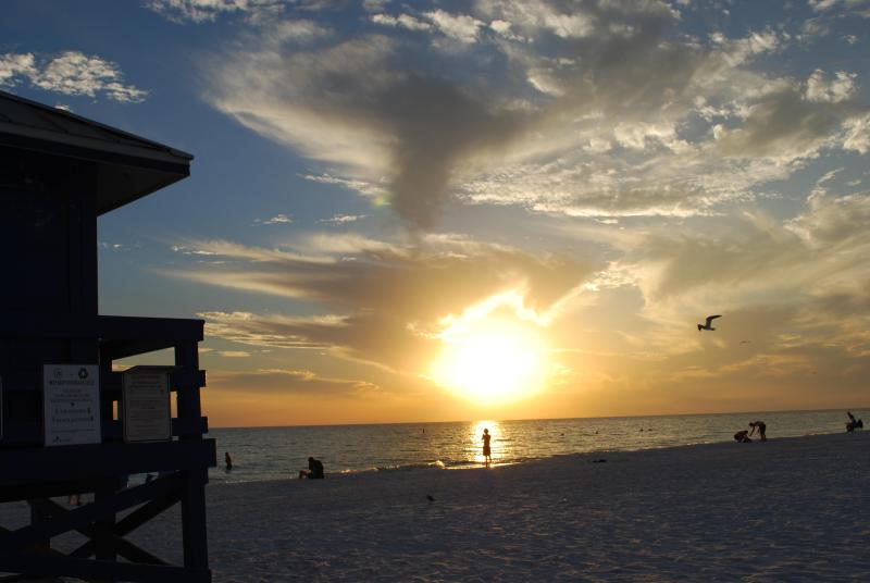 One of those just beautiful sunsets on Siesta Key Beach - WONDERFUL LOCATION....5min. to SIESTA KEY BEACH !! - Sarasota - rentals
