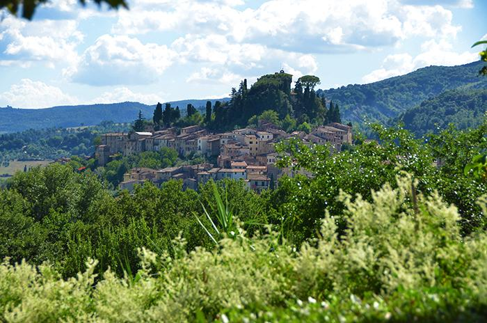The view from the home - Large Beautiful Tuscany Villa with Pool, Archery and Golf Driving Range - Cetona - rentals
