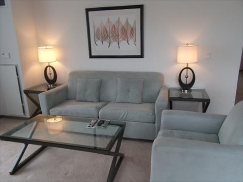 Large Living Room with pullout bed. - Lux 2BR Cambridge Apt by MIT - Cambridge - rentals