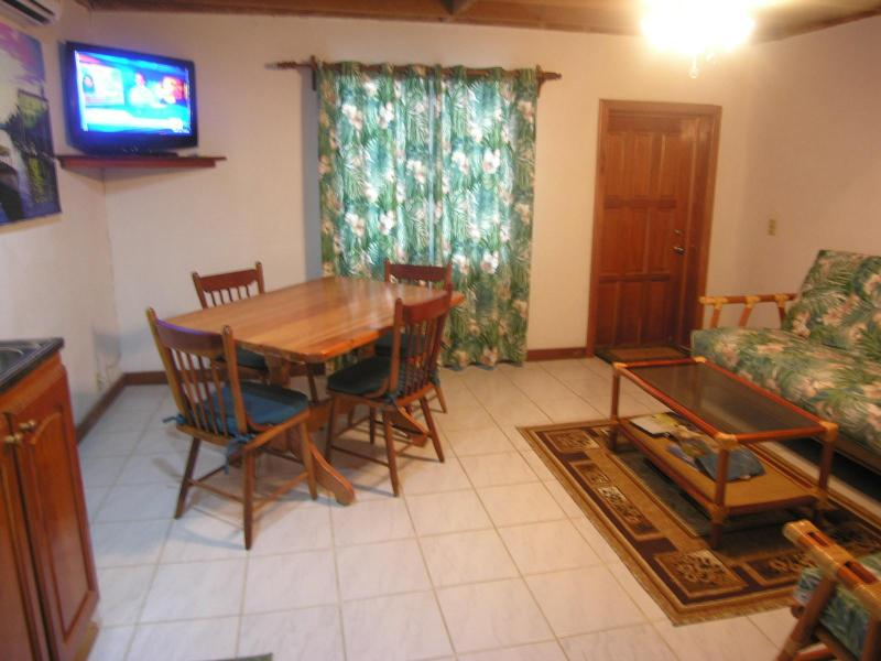 Living Room, dining room, kitchen - 1 br condo  on the beach on a Caribbean Island - San Pedro - rentals