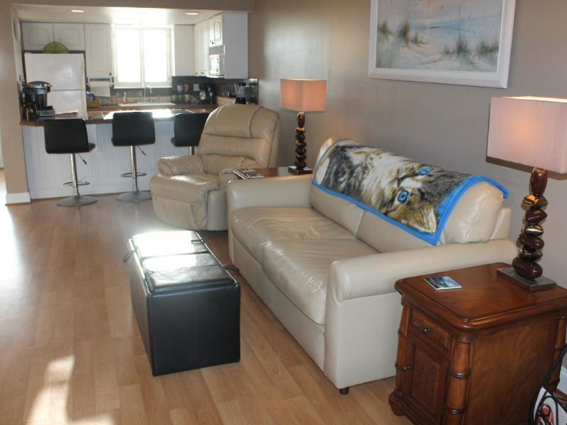 Living Room - The paradise that you won't to leave. Book Early!! - New Smyrna Beach - rentals