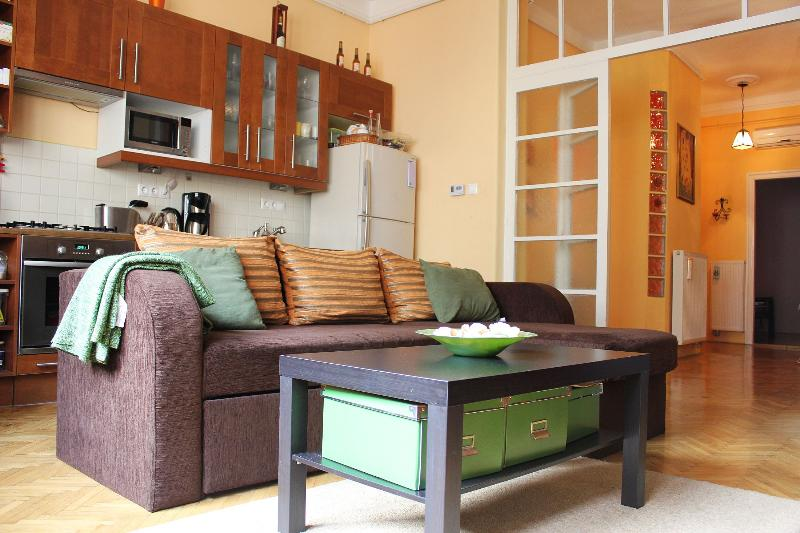 Spaciuos licing with brand new pullout sofa - MAKE YOUR HOLIDAY DREAM COME TRUE! - Budapest - rentals
