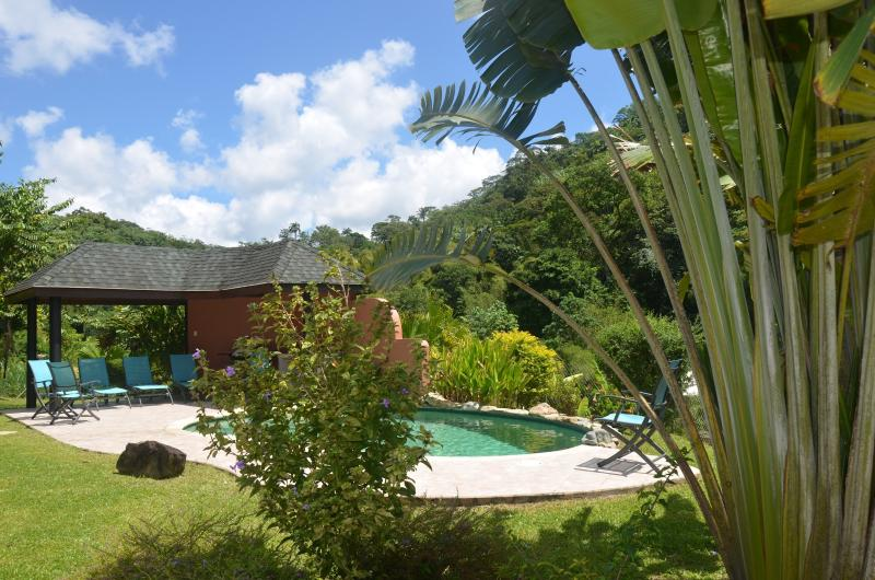 Pool And Wet Bar Area - Luxury retreat with stunning sea and rain forest views - Parlatuvier - rentals