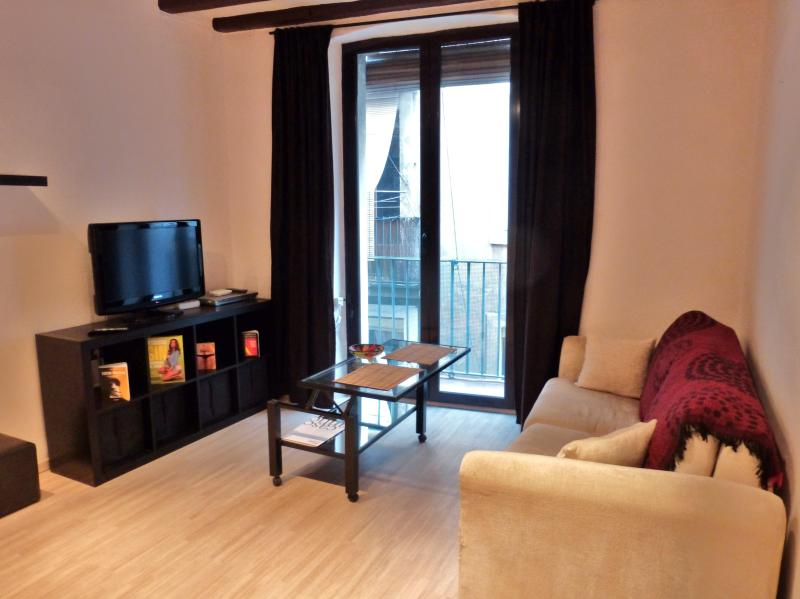 Cozy studio in city center- WiFi - Image 1 - Barcelona - rentals