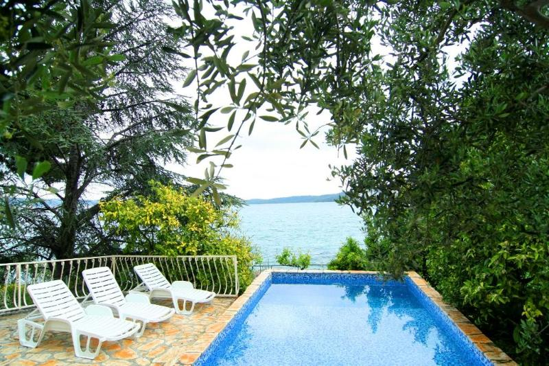 Superior apartment for 4 with a pool - Image 1 - Seget Donji - rentals