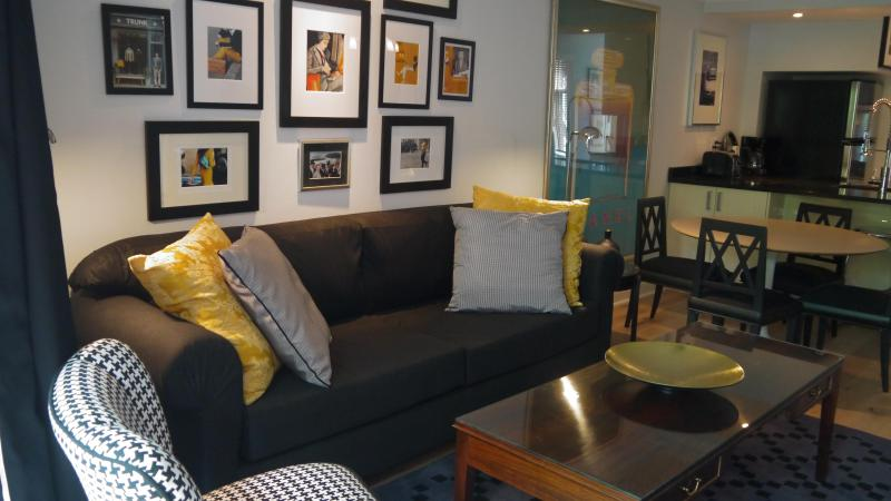 LIVING ROOM - Montreal-centre Ville Est-2 Bedrooms Apartment (2234) - Montreal - rentals