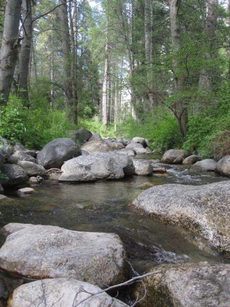 Season Creek - Strawberry Creek - Shea-D Pines in Idyllwild - Idyllwild - rentals