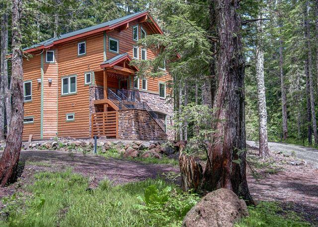Chalet am Berg - NEW! Fireplaces, hot tub, dogs ok - Image 1 - Government Camp - rentals