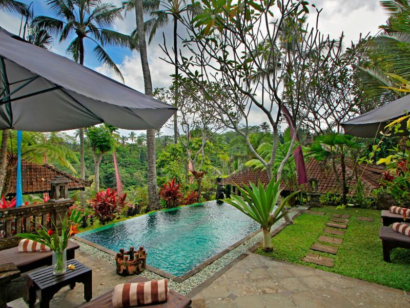 Swimming Pool - Mahogany Villa 2 bedroom valley view - UBUD - Ubud - rentals