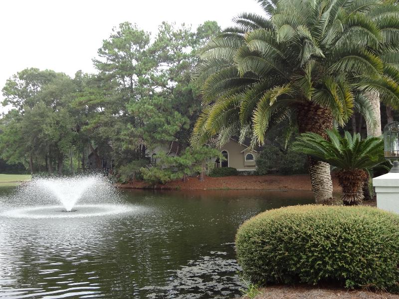 Enjoy private lagoon view... - Peaceful Retreat on a Private Lagoon Overlooking Golf Course - Saint Simons Island - rentals