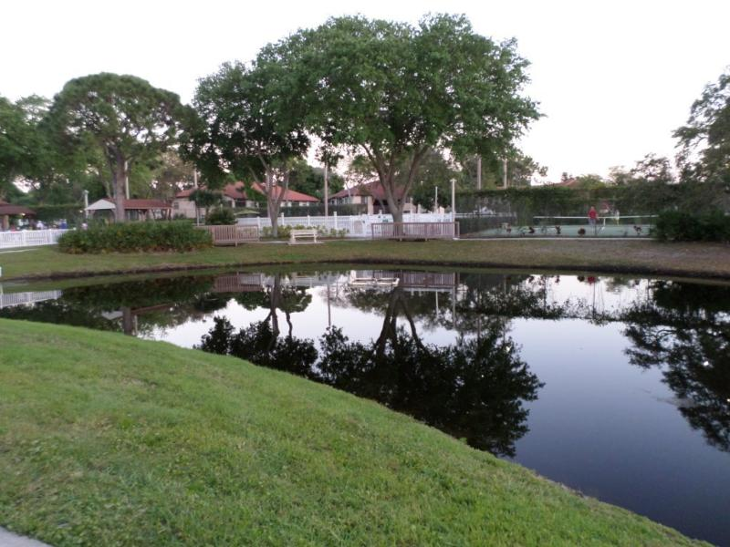 View from the Patio - Shorewak Vacation Villas - The Palms - Bradenton - rentals
