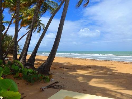 Private Beach Club - Spectacular Villa On Rio Mar, A Relaxing And Exciting Place! - Rio Grande - rentals