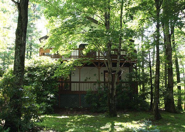 Appalachian Dream great retreat minutes from the slopes at Appalachian - Image 1 - Blowing Rock - rentals