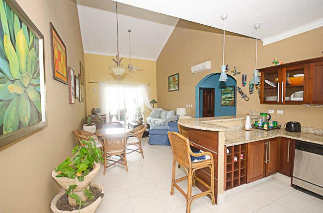 Well decorate living room and kitchen  - 2 bedroom and 2 bathroom Oceanfront Condominiums - CE1135 - Cabarete - rentals