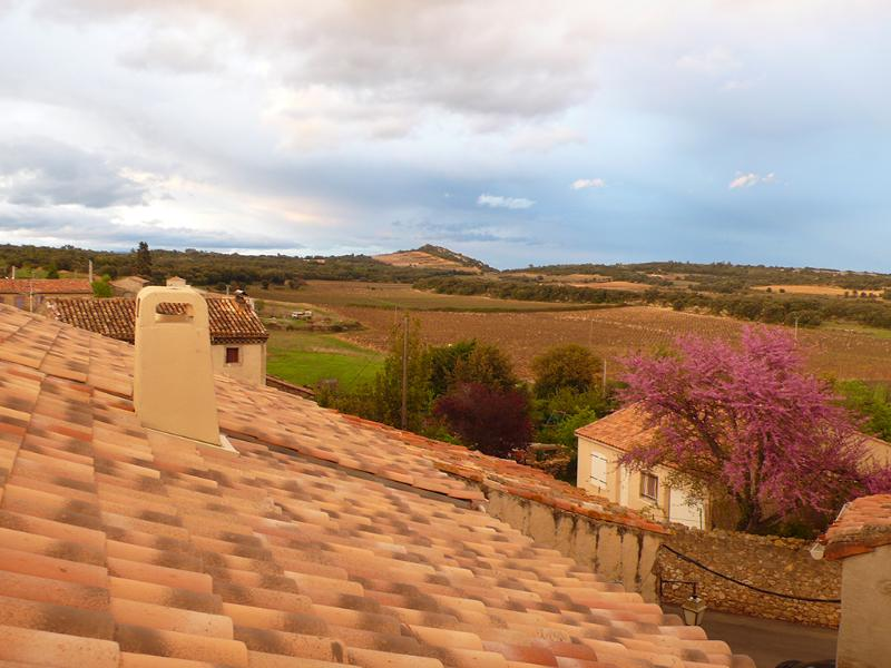 "Gorgeous views and hues  - La Belle Ancienne (""Ancient Beauty"") offering 25% off! - Saint-Chinian - rentals"