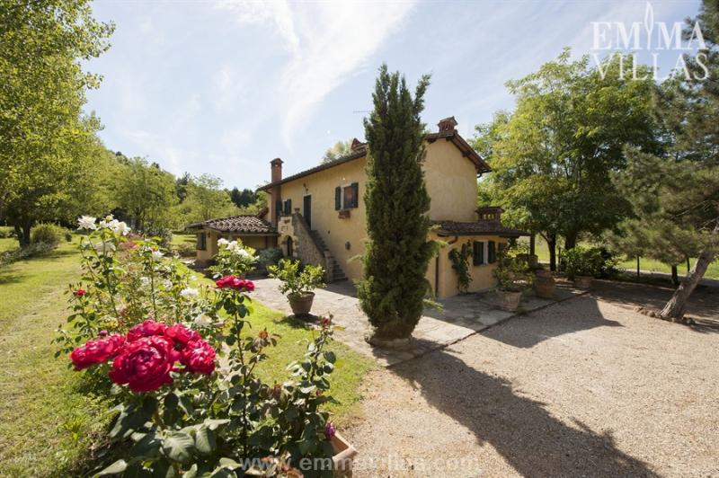 Le Grillaie 12 - Image 1 - Italy - rentals
