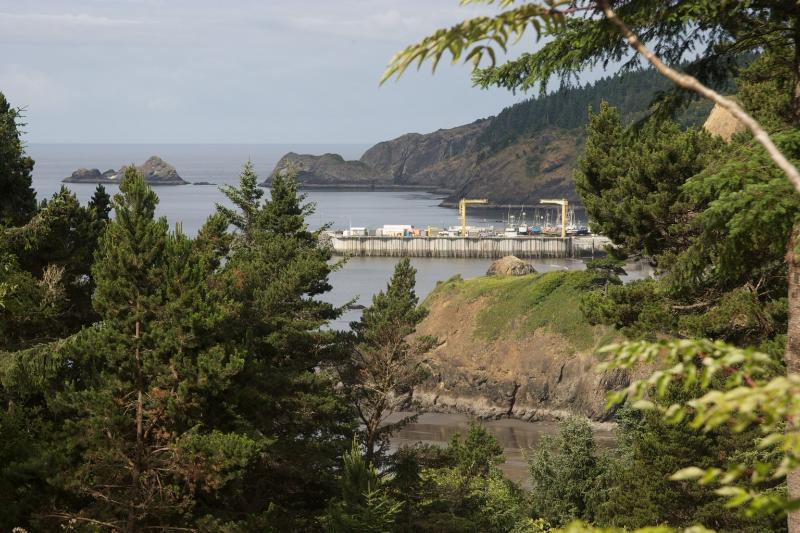 our view - Battle Rock House - Port Orford - rentals