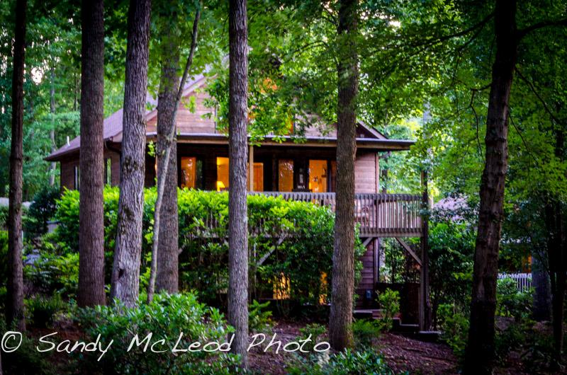 Asheville Cabins of Willow Winds - Image 1 - Asheville - rentals