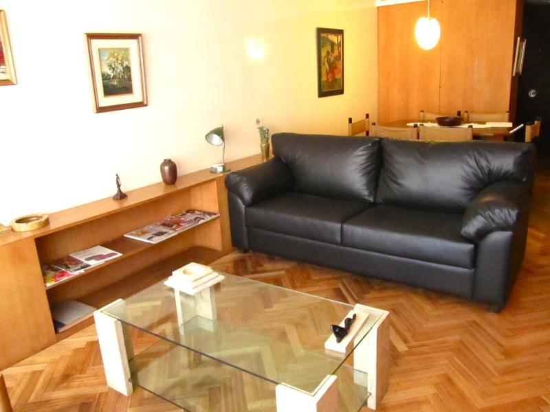 living room from the balcony - A vintage apartment in BA finest neighborhood - Buenos Aires - rentals