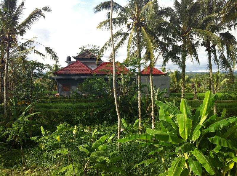 Middle of Balinese landscape - BEYOND UBUD: New Villa, mountain and paddy's view - Kedisan - rentals