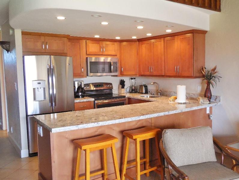 **$175 a nt avail 09/05 - 09/15/14** OCEANVIEW  2Bdrm / 1 Bth Luxury unit - Image 1 - Kaanapali - rentals