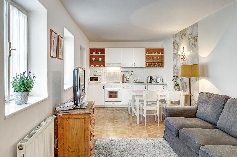 Royal Mansion - Exclusive One Bedroom Apartment - Royal Mansion - Exclusive One Bedroom Apartment - Prague - rentals