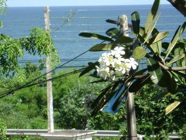 Balcony view - Seven - Tangalle - rentals