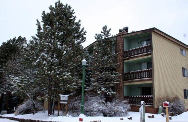 The Wren Building - Just 1.5 Blocks from the Slopes! - Spacious!  2 Bed 2 Bath Ski & Bike Condo in Angel Fire, NM - Angel Fire - rentals