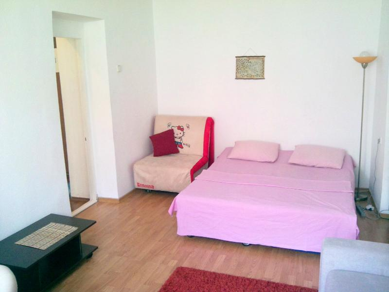 Sweet Condo in the Center - Image 1 - Kiev - rentals