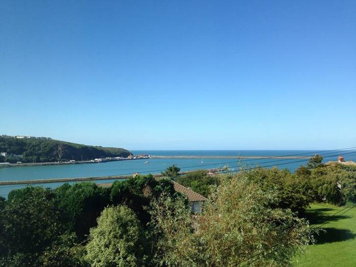Pet Friendly Holiday Cottage - Hillside, Fishguard - Image 1 - Fishguard - rentals