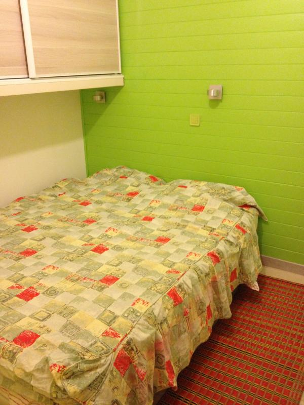 double bed in the sleeping room - Latin Quarter_quite new apartment - Paris - rentals