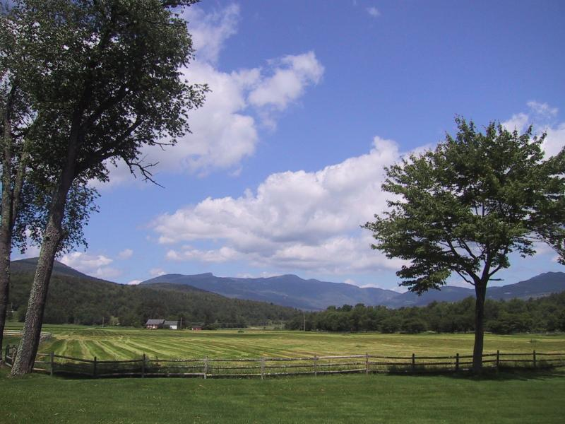 Fabulous 2BR Condo - Spectacular Summer View - Fabulous Luxury Stowe Condo-Unsurpassed Mtn Views - Stowe - rentals
