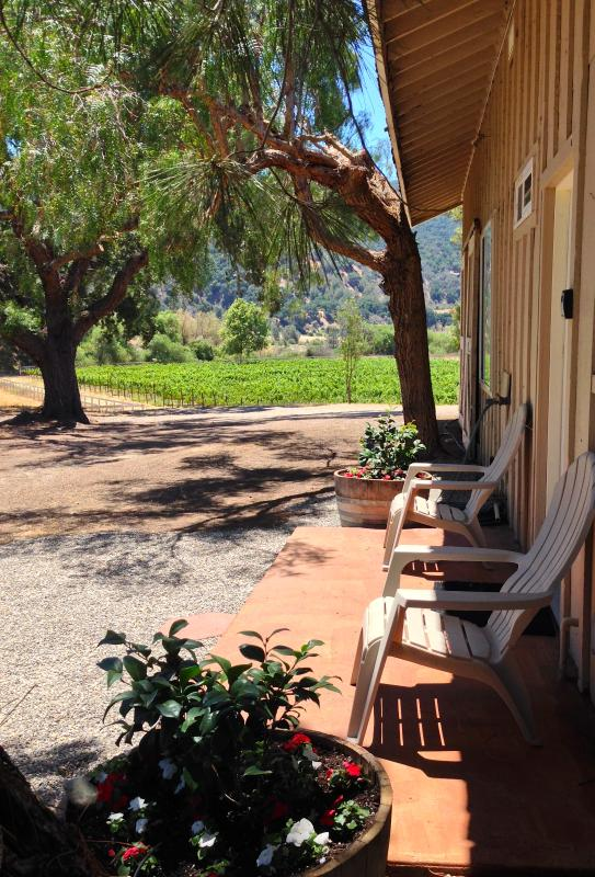 Entry with view to vineyard - 16 acre ranch with vineyard - Santa Ynez - rentals