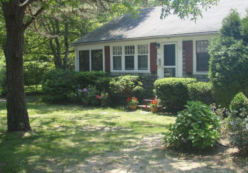 Cottage and Front Yard - Walk to Beach - Cozy Cottage - Large Yard - South Yarmouth - rentals