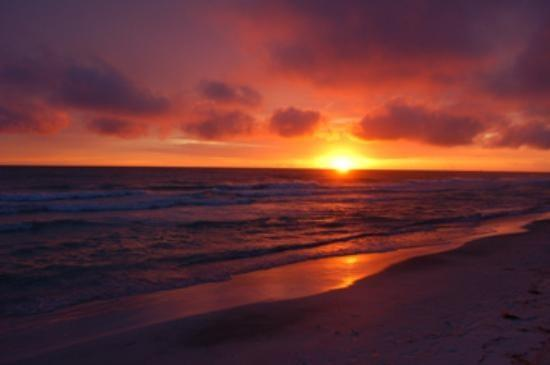 sunset Gulf of Mexico - 100 YARDS  FROM  THE  BEACH ! - Longboat Key - rentals