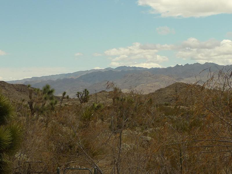 views from back patio - large 2 bedroom house with land and great views - Yucca Valley - rentals